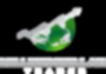 MDT Logo V1.png