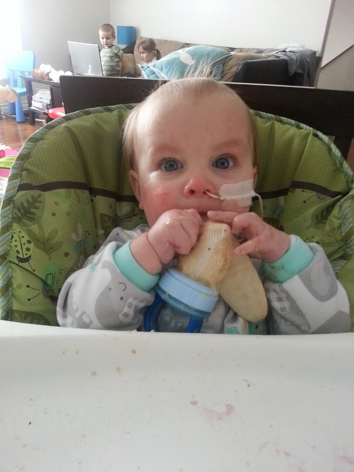Teething net with fruit.jpg