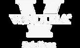 Vendura Solutions Logo_edited.png