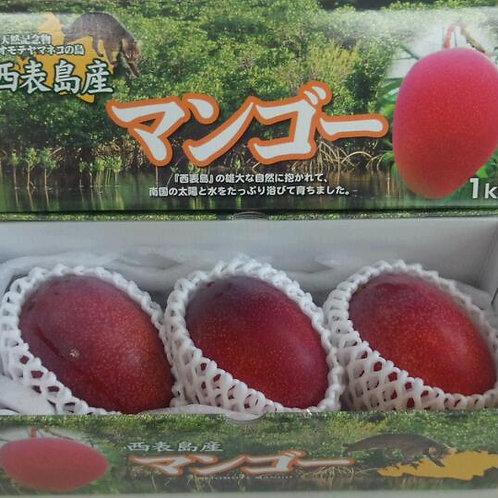 秀品マンゴー       1kg(2~3個)      商品コードMS1