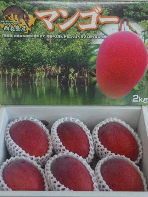 優品マンゴー       2kg(4~8個)      商品コードMY2