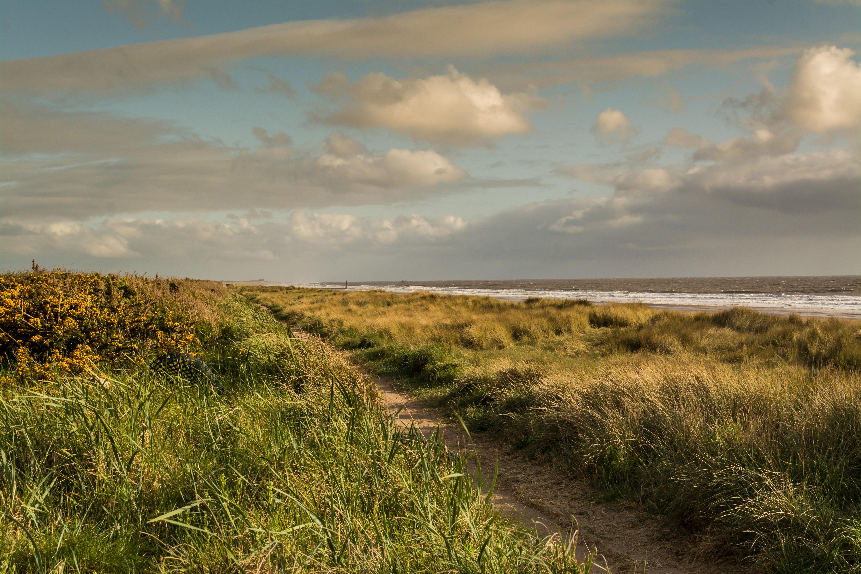 Coastal path 16