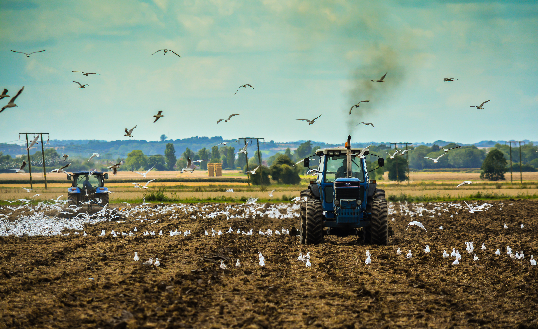 Ploughing Saltfleetby 5
