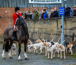 Boxing day Meet 13