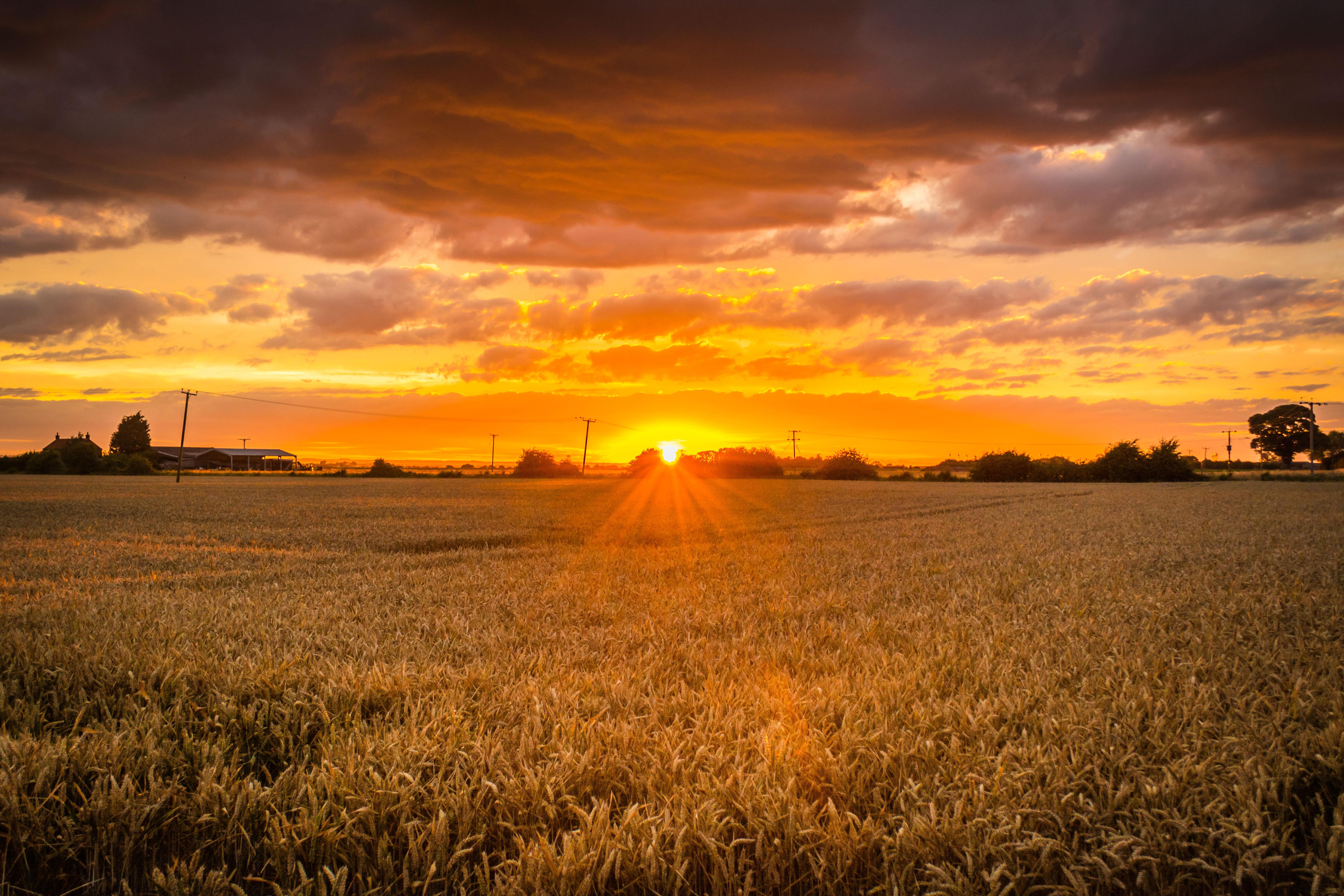 Saltfleetby Sunset