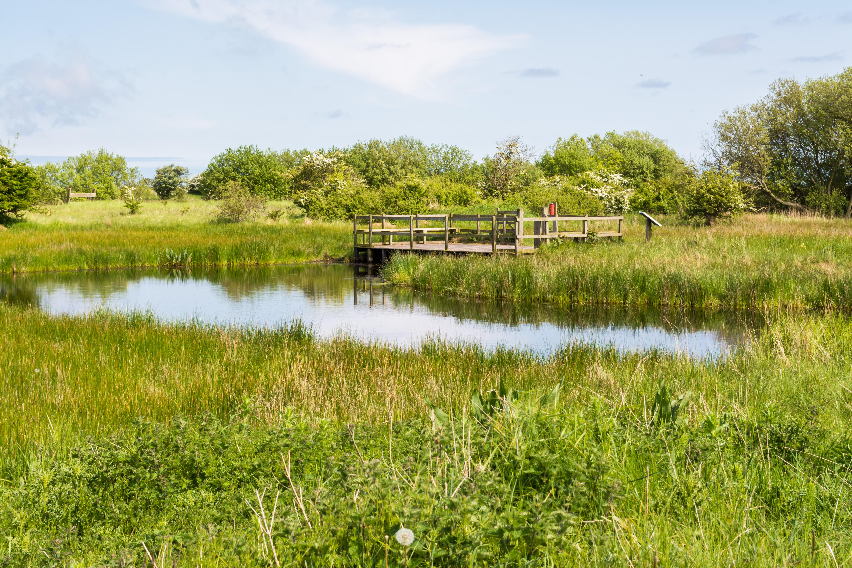 Rimac Pond