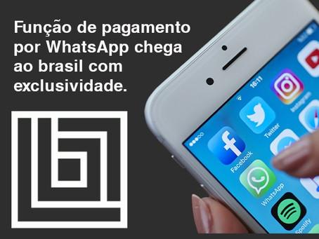 Função de pagamento por WhatsApp chega ao brasil com exclusividade