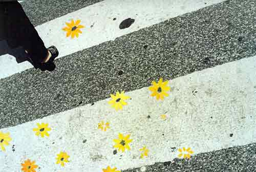Flower-Power-6.jpg