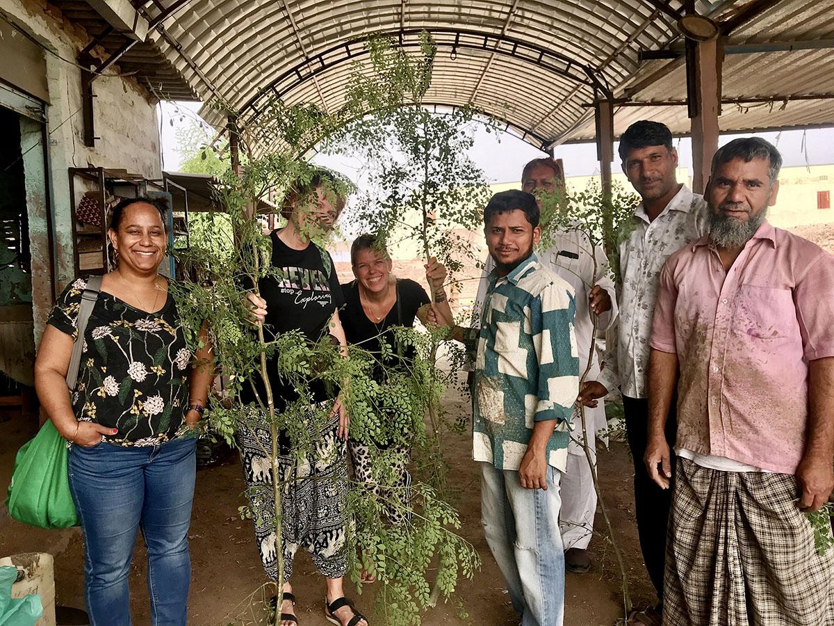 Moringa at Pipar printers