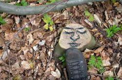 Face-Forest--22.jpg