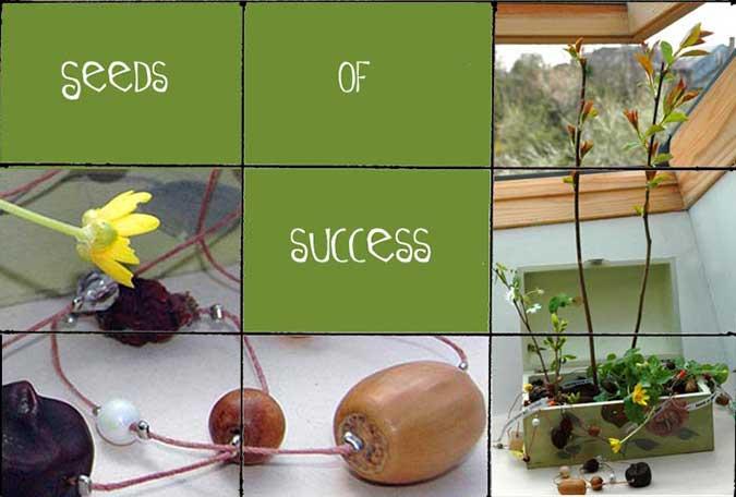 Seeds-of-success.jpg