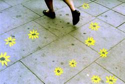Flower-Power-4.jpg