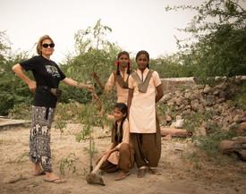 Planting of moringa branch