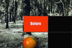 Image-1-copy-copy.jpg