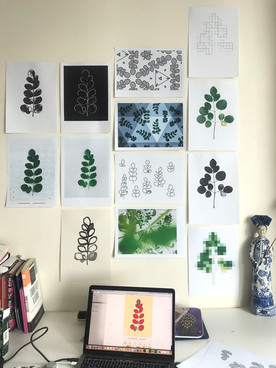 Moringa design work in progress