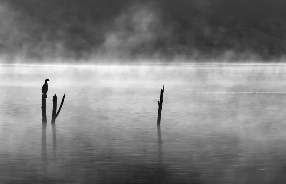 Wivenhoe Backwater