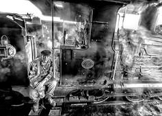 """Steam Train Driver"""