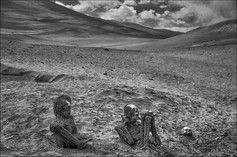 """Death in the Desert"""