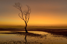 """Beachmere Sunrise"""
