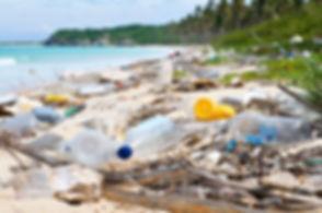Plastic Henderson Island (3).jpg