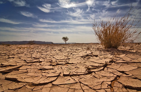 Drought Cracked Earth (2).jpg
