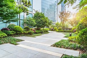 Architecture green path (2).jpg