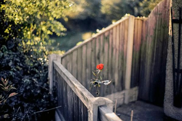 untitled_181009_0002-Edit.jpg