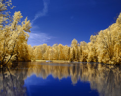"""Wiegand's Lake Park -         """"The Blue"""""""