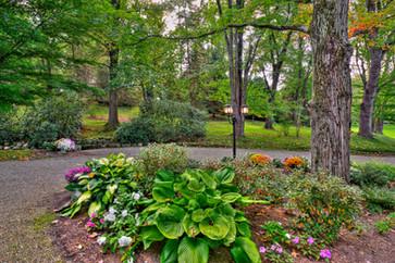 Wiegand's Lake Park -       Beauty