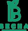 logo_vesna_green_512cut.png