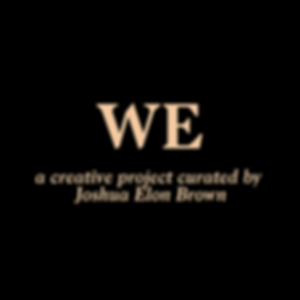 WE Project Information (1).png