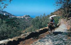 Stone pave trails Kea