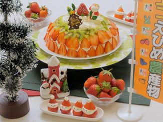 2種のえひめいちごのドームケーキ