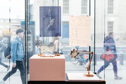 Fake, Science Gallery Dublin, 2018