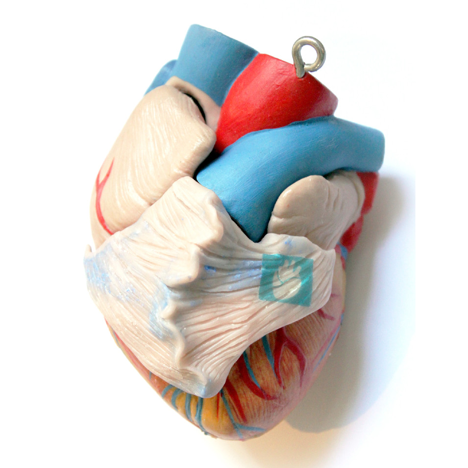 Heart organoid on original organ copy.jp
