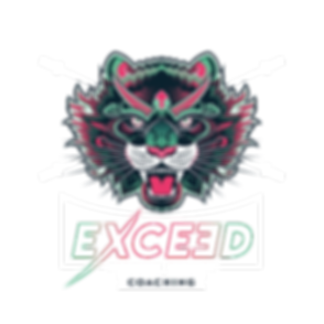 LOGO-EXCEED-COULEURS-transparent.png