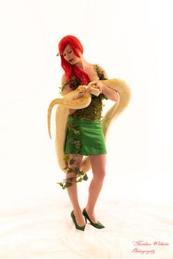 2020-03-15 serpents fond Blanc (54)