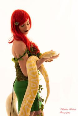 2020-03-15 serpents fond Blanc (57)
