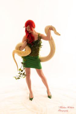 2020-03-15 serpents fond Blanc (48)