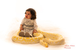 2020-03-15 serpents fond Blanc (365)