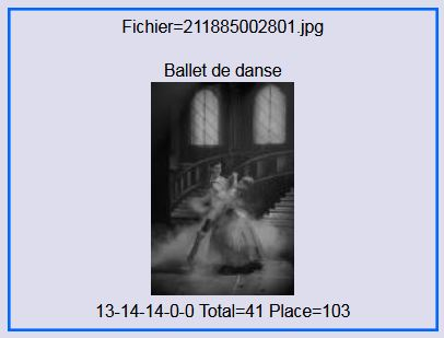 2017 ballet de danse