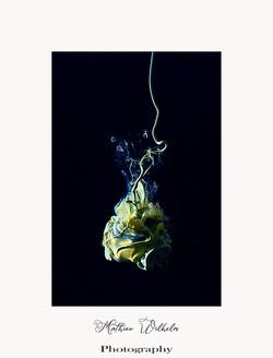 2021-05-12 peinture dans l'eau (11)