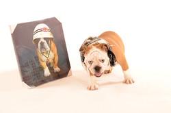 2011-12-10 Marion Greg trickpa & Gaspar le chien (56)