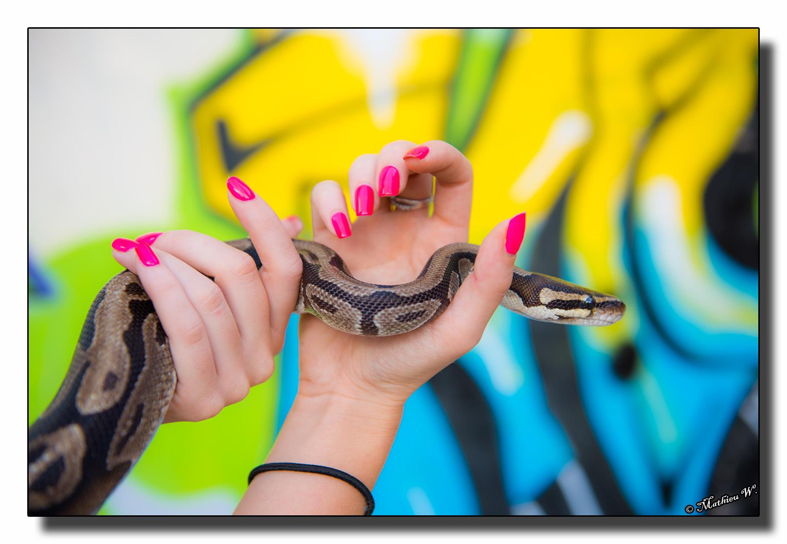 2016-07-26 Aurelie Camusso 15eme Serpents exterieur (347)
