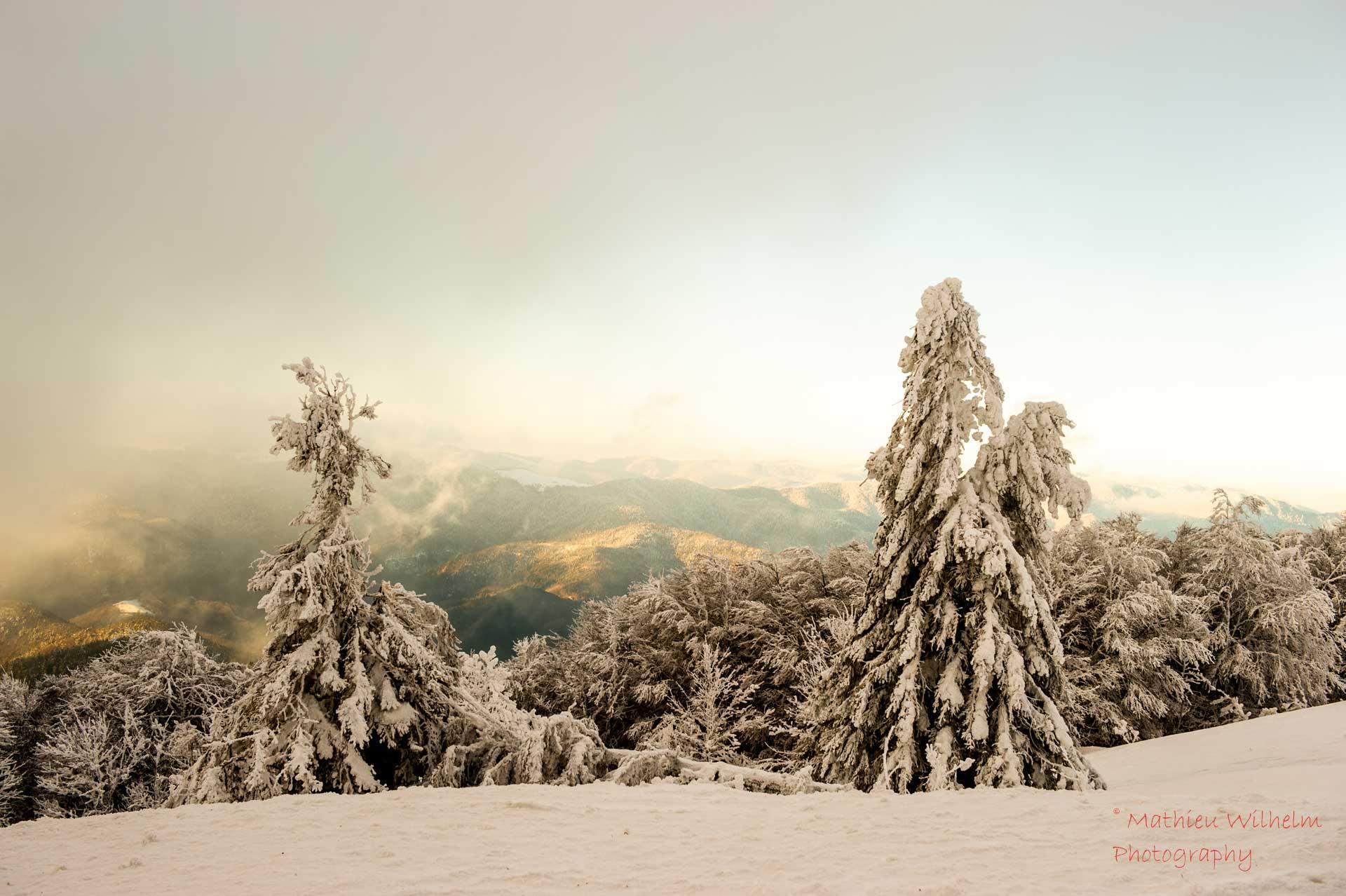2021-01-10 Grand ballon - neige (61)