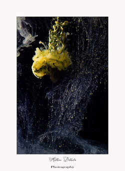 2021-05-12 peinture dans l'eau (6)