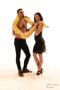 2020-03-15 serpents fond Blanc (123)