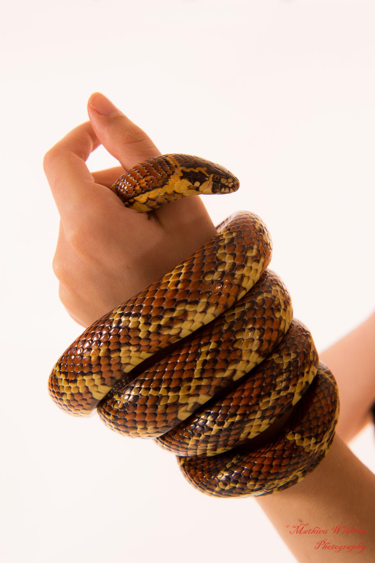 2018-03-31 Fanny 34 eme -Yannick - serpents (8)
