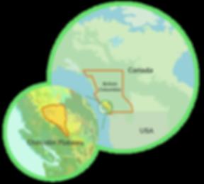 Koordinaten des Chilcotin Plateau