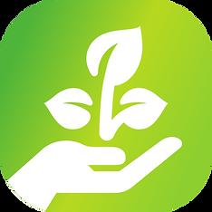 Dein Wald Logo